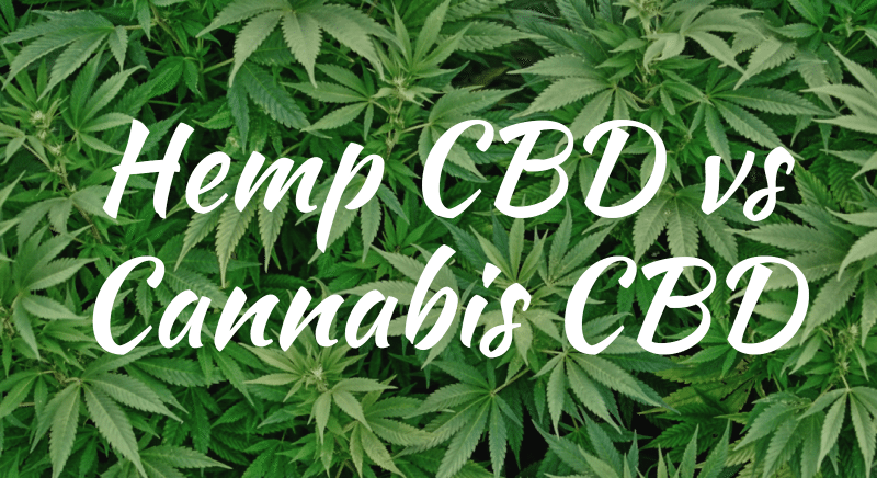 Differences between Hemp Oil & Cannabis Oil